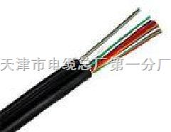 100对电话通信电缆HYAC电缆型号