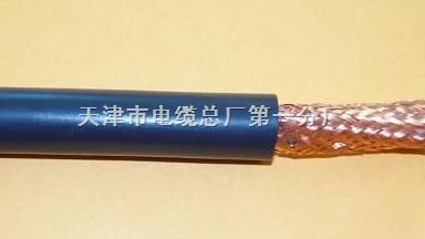 屏蔽通信电缆ZR-HYAP