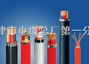 铠装高温电缆、铠装屏蔽电缆、阻燃铠装电缆