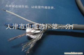 RS485-22型铠装电缆