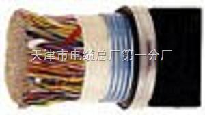 HYAT53钢塑复合带铠装通信电缆