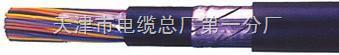 阻燃通信电缆 zr-hya22