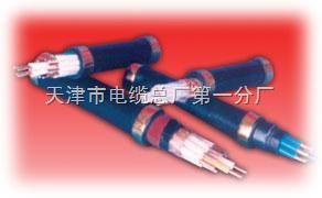 塑料绝缘控制电缆KVVP-22