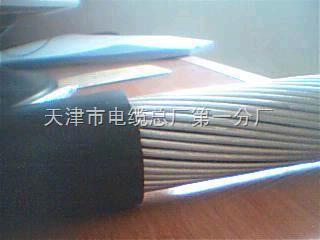 煤矿用阻燃控制电缆MKVV32;矿用控制电缆
