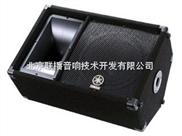 专业音箱  YAMAHA-SM12V