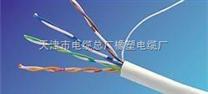 阻燃双屏双绞屏蔽电缆ZR-RVSPVP
