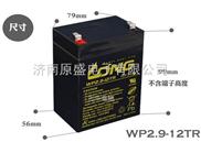 台湾LONG WP2.9-12TR 12V 2.9Ah蓄电池