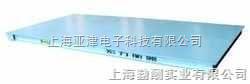 河南省电子称.电子磅秤