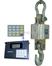 OCS-XZ-10t无线打印电子吊钩秤