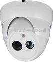 阵列灯摄像机,高清网络摄像机,防雷摄像机,隐藏地线防雷,防雷专用