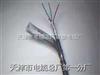 HYA53 200*2*0.6 全塑铠装通信电缆