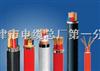 KFV22-24*1.0铠装高温防腐电缆KFV22铠装控制电缆、