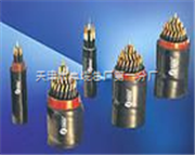PTYYPTYY- 8*1.0铁路信号电缆