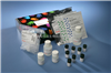 促销小鼠γ氨基丁酸(GABA)ELISA试剂盒
