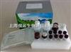 犬睾酮(T)ELISA试剂盒